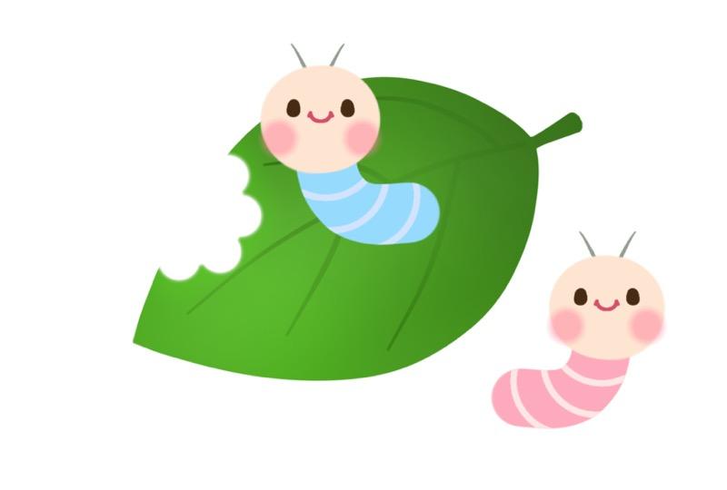 イモムシと葉