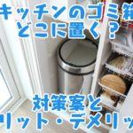 キッチンのゴミ箱どこに置く?対策案とメリット・デメリット
